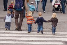 Conocimiento del entorno. Bloque III: Vida en Sociedad y Cultura. / Tablero en el que se recogen imagenes para trabajar el entorno con el alumnado de infantil.