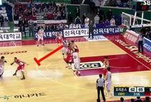 NBA / 농구 관련
