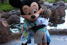 -  Disney's ºoº Aulani  -