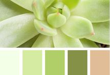 Color inspiration 4