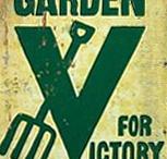 Victory Gardens 2