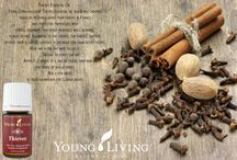 Young Living Essential Oils / by Brittany Walters