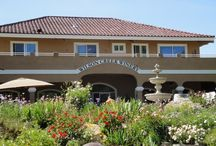 Oak Hills Ladies Travel & Brunch Club / our FUN plans for the 2015-2016 year  / by Diane Rodriguez