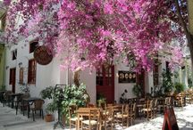 Greek Restaurants in Nafplio
