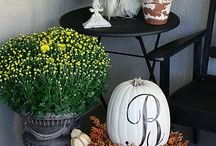 Halloween/fall / by SHYboutique
