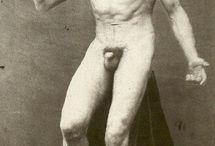 Gaudenzio Marconi