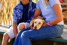 Pet Safety & Preparedness / Safety Tips and Emergency Preparedness For Man's Best Friend!
