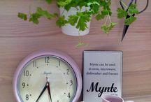mynte