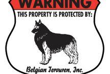 Belgian Tervuren Signs and Pictures / Warning and Caution Belgian Tervuren Signs. https://www.signswithanattitude.com/belgian-tervuren-signs.html