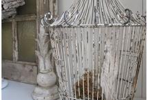 vogelkooi / bird cages