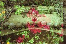 Aeternitas - Sedlec Ossuary