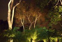 Free Real Estate / Lighting beyond your backyard.