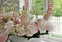 fiori  di Martine