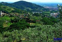 Toscana Pistoia Serravalle Psitoiese VENDESI villa/villetta