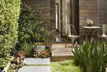 Backyard/Garden Love / by Ashley Lim
