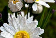 Blume Häkeln