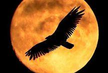 Mesiac na nebi
