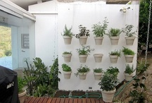 I love my garden
