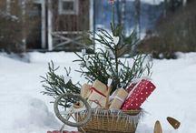 Christmass outdoor