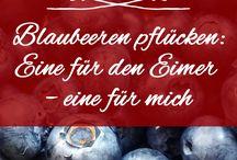 ❤️  Hofladenliebe / Alles von Hofladenliebe: Unsere Produkte, Erzeuger, Grafiken und Blog-Artikel