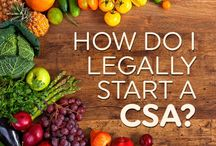 Community Supported Agriculture / Starting a CSA, joining a CSA, what is community supported agriculture, how community supported agriculture works.