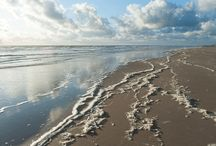 The Sea / Fotografie: Rob Donders