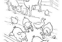 Zvířátka ze statku - omalovanky