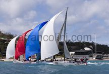 Spinnakers / by Andrea Francolini
