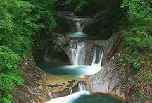Bilder + Naturbilder