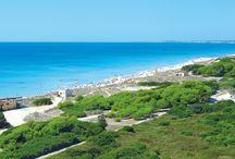 Minorca - Sol Milanos Pinguinos / In prima linea sulla più bella spiaggia di Minorca (la bianchissima e lunghissima Son Bou), il resort è composto da 2 edifici di 11 piani, separati dalla zona piscine. Si trova a 20 km da Mahon e 35 km da Ciutadella.