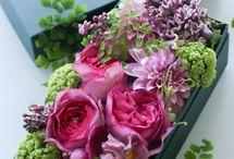 Virág dobozok - flower boxes