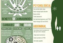 Medicine PowerPoint