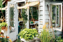 potting sheds and green houses
