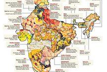 Indian cusine