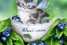 Blueberry Kitty