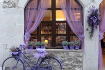Lilac Expressions / MUTED COLOR OF ELEGANT PAST, AROMATIC, DELICATE AND POWDERY. IT HOLDS MYSTERY.