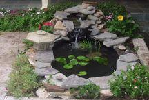 my fish pond / by Rhetta Hunt Rolley