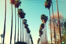 California Dreaming... / by Melissa Birdwell