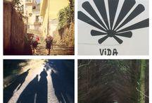 Viajes de vida / Experiencias de viajes vivencias Naturaleza paisajes vida