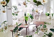 Indoor plant rooms / by Danny Pendergast