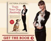 Victoria Stilwell Dog Training Tips
