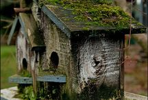 BIRDHOUSE / by Susan Laughlin