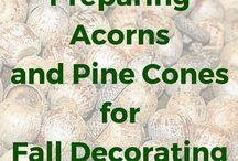 PREPARING PINE CONES & ACORNS FOR DECORATING