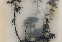 Grass / leaves