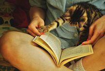 Könyvek és kis kedvencek