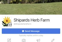 Shipards Herb Farm