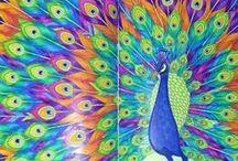 Millie marotta's Coloring