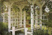 Ogród-pnącza