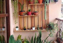 ideas en jardines de interiores