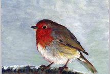 Peintre (Vitec) / Rouges-gorges
